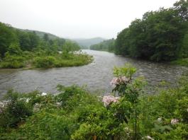 west river trail june 2013 5