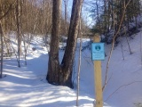 Brattleboro Bridge Project: Week of March 24, 2014