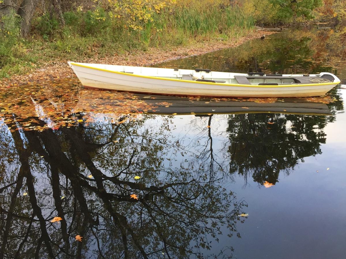 West River Trail Autumn 2014