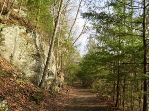 West River Trail April 2015