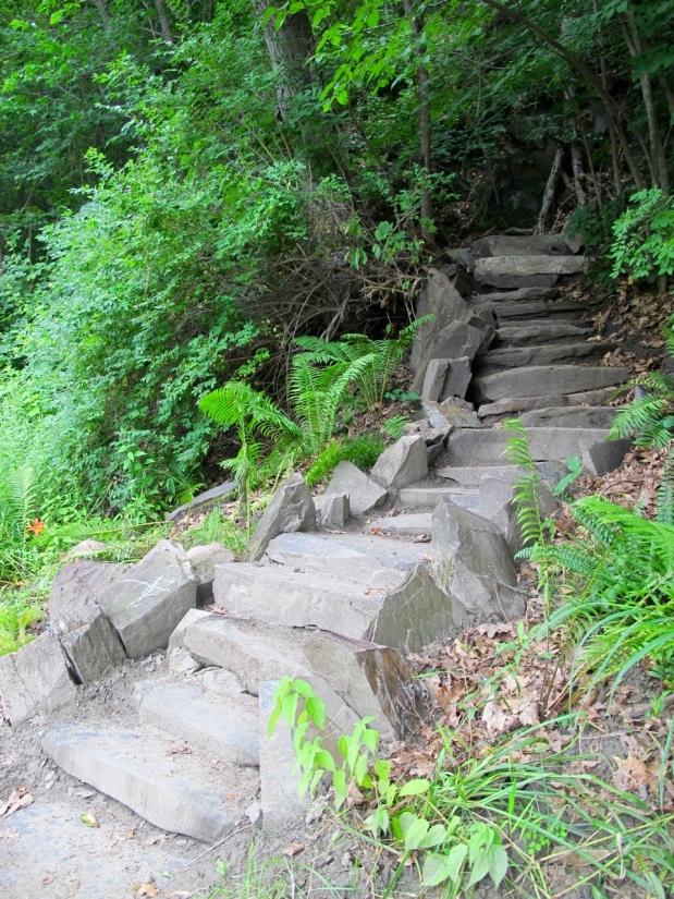 Riverstone Preserve Steps