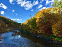 West River Trail, Autumn 2016