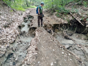 WRT trail workday June 2017 - 2