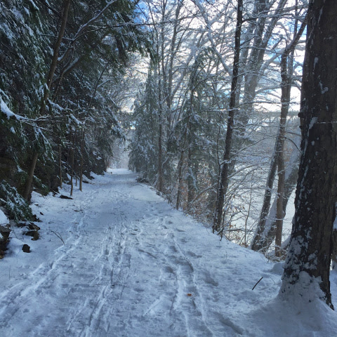 West River Trail Winter