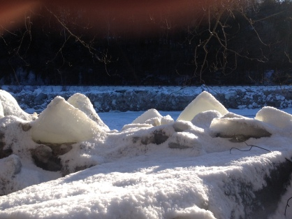 Icebergs along the West River Trail